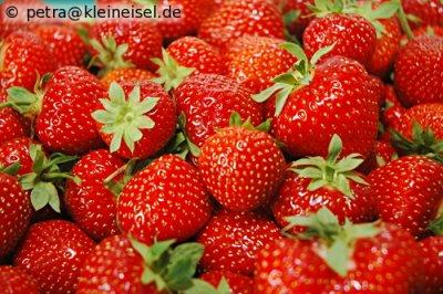 Erdbeeren total: Erdbeer-Tiramisu-Schnitten
